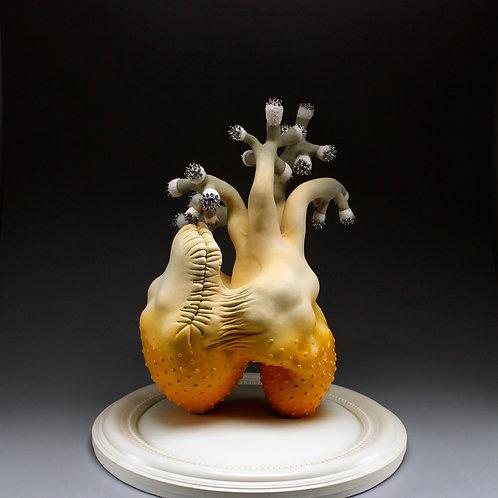 Sculpture- Biomorphism - Weds 6-9pm/Oct 21-Nov 18