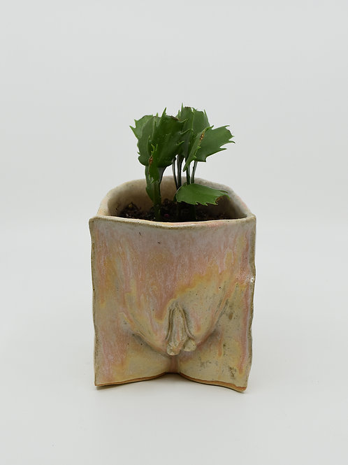 Stephanie Dishno - Planter Single Vulva (SAD-8)
