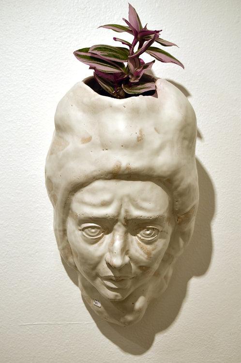 Stephanie Dishno - Planter Head (SAD-2)