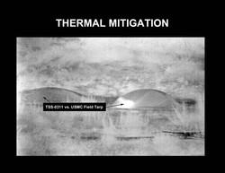 Thermal Mitigation