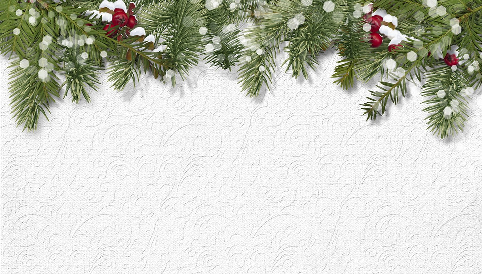 Christmas background with holly,firtree_