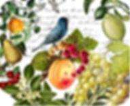 Fruity Gin.jpeg