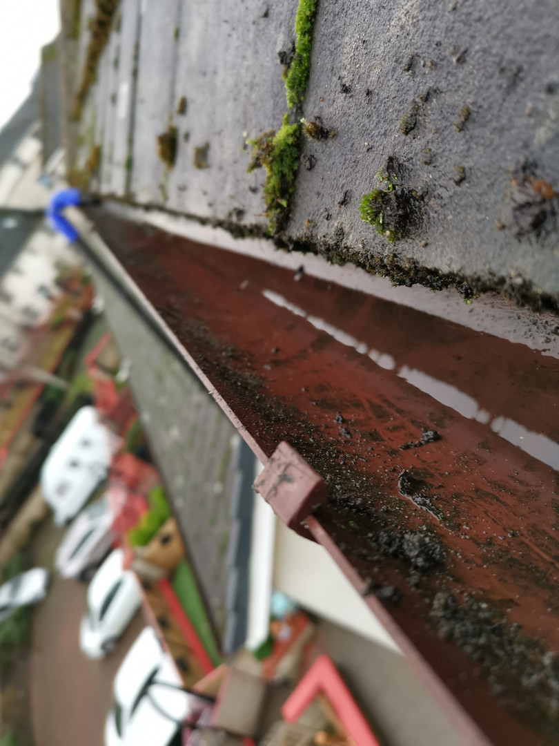 Gutter Cleaning Services - Edinburgh
