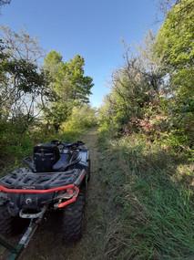 ATV on LR Trail