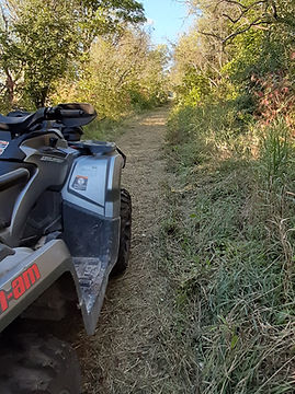 ATV on trail Sept 2020 Trail - 00024.jpg