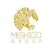 MESHICO GROUP.jpg