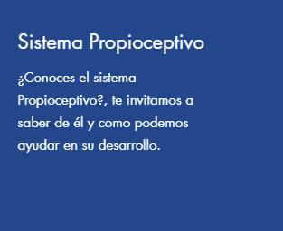 Sistema Propioceptivo.png