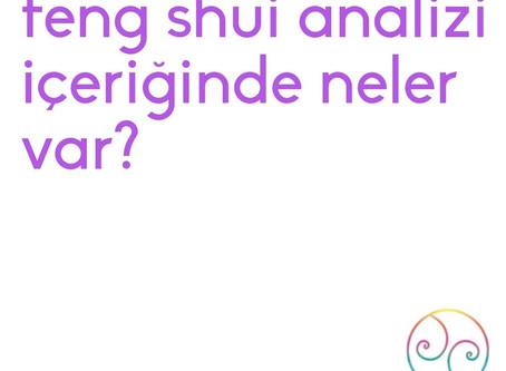 Feng Shui Analizi İçeriğinde Neler Var?
