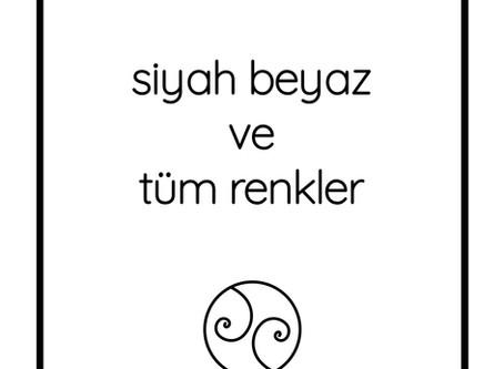 Pınar ve bendeki yankıları üzerine...