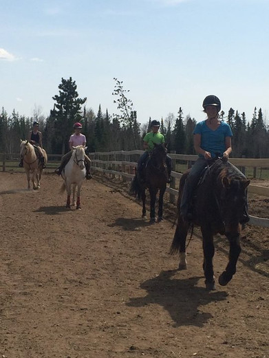 Great day for riding at WillStar Riding