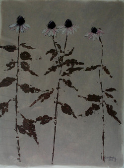 Black-eyed Susans (2009)