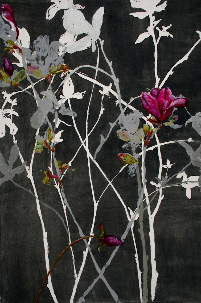 Tulip Magnolias II (2014)