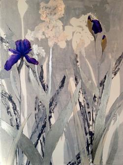 Iris - Purple (2013)