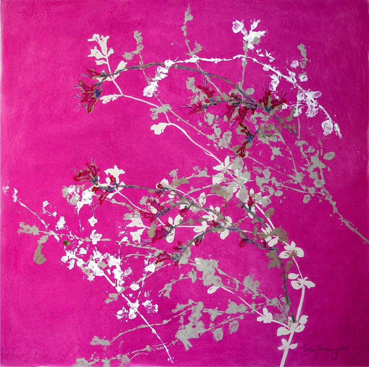Salvia (2011)