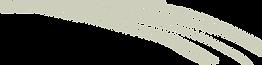 ronit_logo-18.png