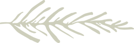 ronit_logo-19.png