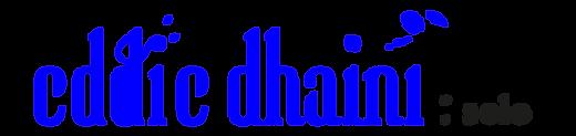 logo EDDIE SOLO BLEU.png