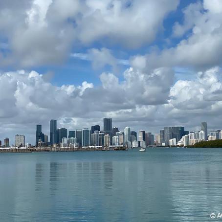 Séminaire Saint-Algue - Coiff&Co - Intermède à Miami