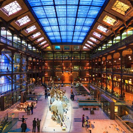 Événement exclusif pour Henkel au Muséum National d'Histoire Naturelle