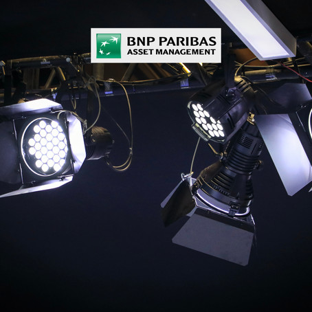 BNP Paribas Asset Management - GROUP NETWORKS VIRTUAL SEMINAR 2020