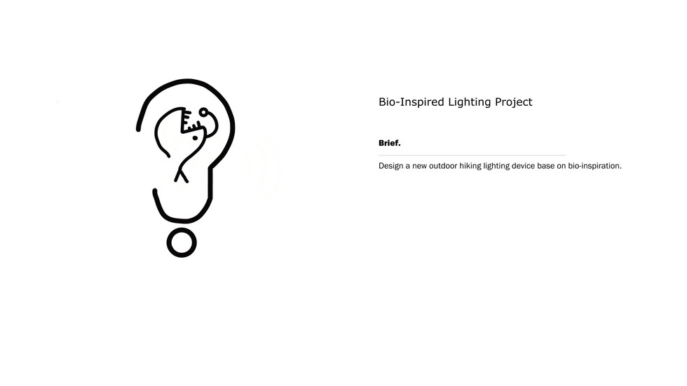 bio light-1.jpg