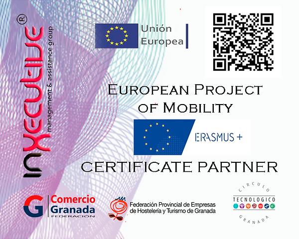 Erasmus-Pegatina.Partner.01.png