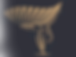 Nuevo-Logo-Levantate.02.png