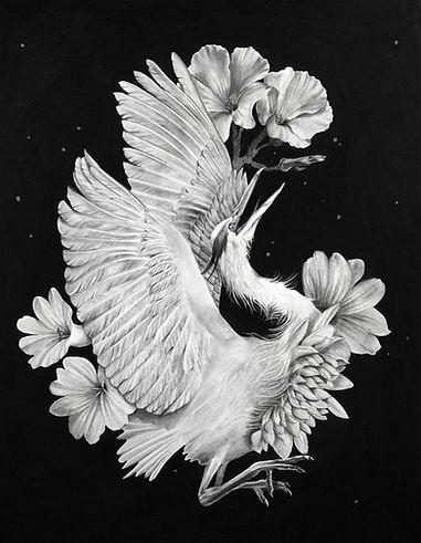 Blue Heron Birth