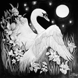 Living Swan