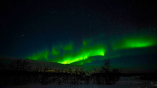 Auroras-9.jpg