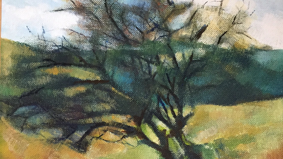 Thorn Tree on Caradoc