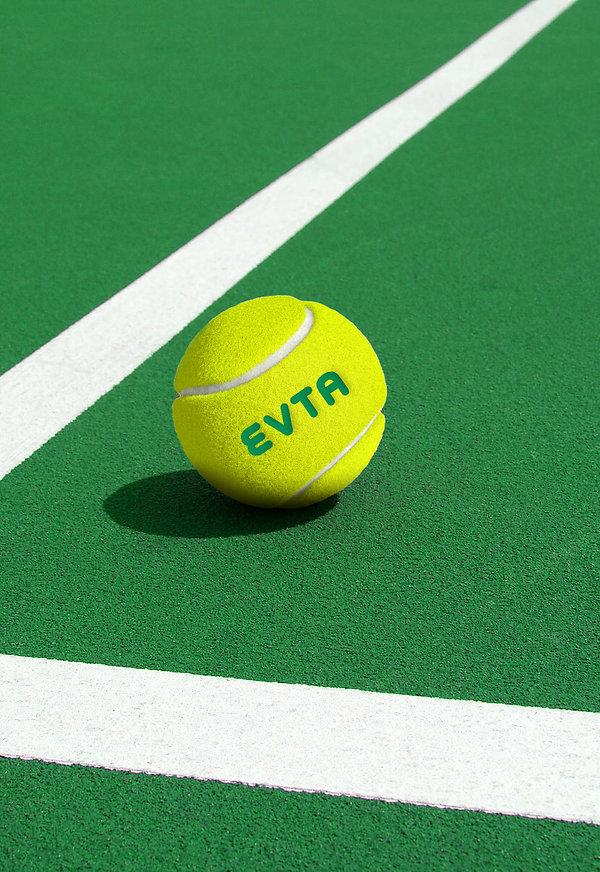 court_EVTA_ball_2.jpg