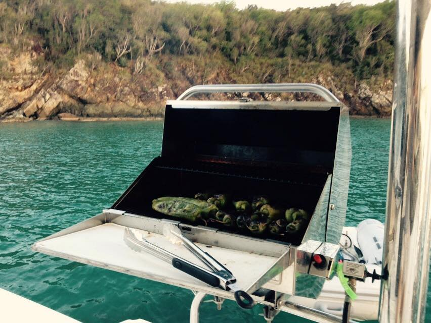 Onboard Grill
