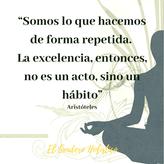excelencia.png
