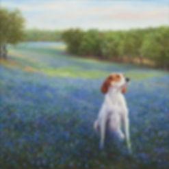 coon dog at twlight 24x24.jpg