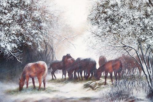 Winter at the Nail