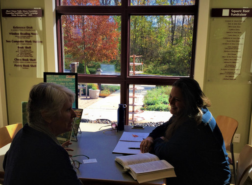 OFFICE HOURS FOR AGRISCULPTURE AMY AS 'STEAM' ARTIST-IN-RESIDENCE AT ALBERT WISNER PUBLIC LIBRARY