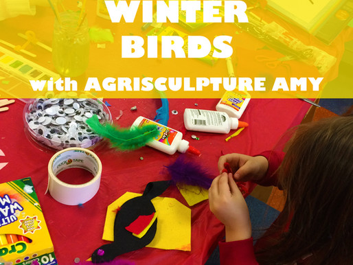 """WINTER BIRDS WITH AGRISCULPTURE AMY"" WORKSHOP @ NEWBURGH JCC"