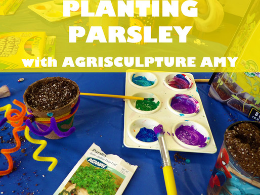 """PLANTING PARSLEY WITH AGRISCULPTURE AMY"" WORKSHOP @ NEWBURGH JCC"