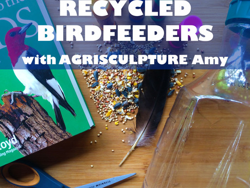 """RECYCLED BIRDFEEDERS WITH AGRISCULPTURE AMY"" - WORKSHOP FOR JARRETT MARKEL CREATIVITY BOOTCAMP"