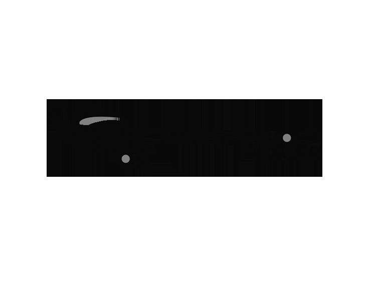 logo_halycon.png
