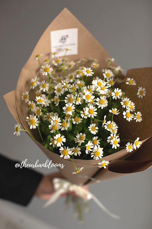 The Charming Chamomile