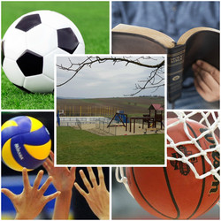 iPiccy-collagesports