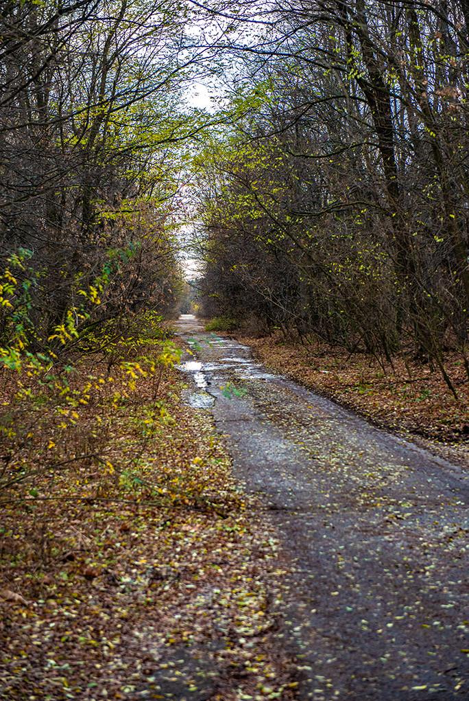 Road in Pripyat
