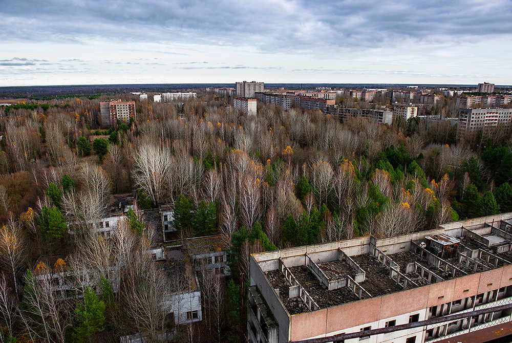 Pripyat - In town Forest