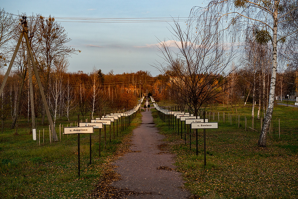 Alley of Memory and Hope