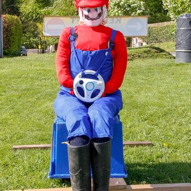 29 - Mario The Plumber