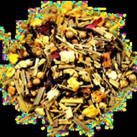 CAZA TRAIL TEA 100GR