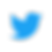 Twitter%20logo_edited.png