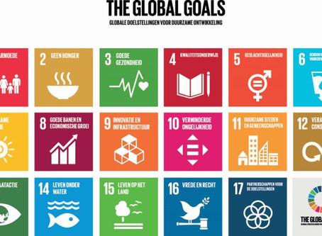 5 stappen om de SDG's te laten werken voor jouw bedrijf